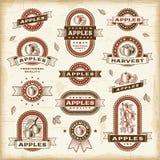 Комплект ярлыков яблока год сбора винограда иллюстрация вектора