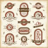 Комплект ярлыков яблока год сбора винограда Стоковое Изображение RF