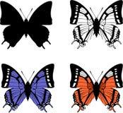 комплект 04 бабочек Стоковая Фотография
