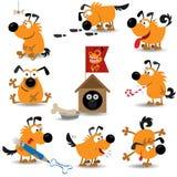 комплект 2 собак смешной Стоковые Фото