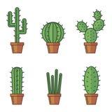 Комплект cactuse Стоковая Фотография RF