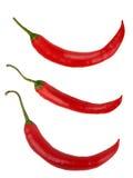 Комплект chili красного перца Стоковое Изображение RF
