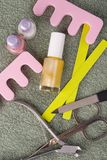 комплект pedicure красотки Стоковые Изображения RF