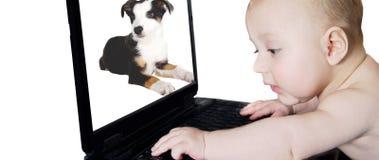 компьтер-книжка младенца Стоковая Фотография