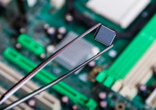 Компьютерная микросхема с щипчиками, электронными стоковые изображения