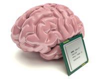 Компьютерная микросхема человеческого мозга и, концепция 3D Стоковое Фото