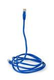компьютер кабеля любит snike Стоковая Фотография RF