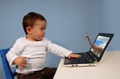 компьютер мальчика Стоковая Фотография