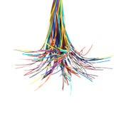 компьютер цвета кабеля с оплеткой Стоковое Изображение RF