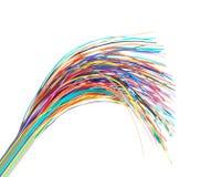 компьютер цвета кабеля с оплеткой Стоковые Фото