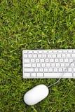 Компьютер Eco дружелюбный стоковое фото rf
