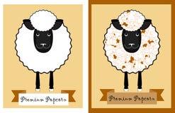 Комплексное конструирование попкорна с овцами потехи Овцы с стерженями попкорна вместо шерстей Прозрачный дизайн пакета попкорна Стоковая Фотография RF