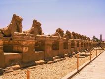 Комплекс виска Karnak Стоковое Изображение