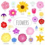 Комплект абстрактных плоских цветков. бесплатная иллюстрация