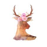 Комплект акварели деревенский оленей, цветков и листьев Стоковая Фотография