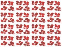 Комплект акварели картины красного мака Стоковое фото RF