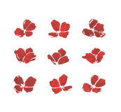 Комплект акварели красного мака Стоковая Фотография