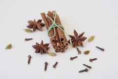 Комплект анисовки циннамона, гвоздичного дерева и звезды на белой предпосылке конец вверх Стоковые Фотографии RF
