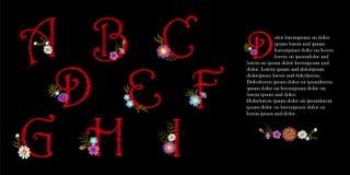 Комплект алфавита вышивки винтажный Начальные цветки крышки падения декоративные Богато украшенная красная иллюстрация вектора по иллюстрация вектора