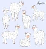 Комплект альпаки Стоковое Изображение