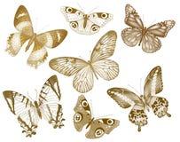 Комплект бабочек вектора Собрание насекомого винтажное для дизайна и scrapbooking EPS10 Стоковое Изображение RF