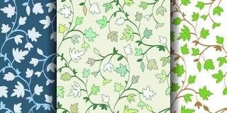 Комплект: Безшовный цветочный узор 3 с ветвями и листьями, абстрактной текстурой, бесконечной предпосылкой также вектор иллюстрац Стоковое Изображение