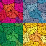 Комплект безшовных картин с листьями пальм Стоковое Фото