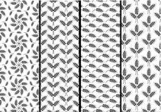 Комплект безшовных картин с ушами пшеницы Черно-белое agricu Стоковые Изображения