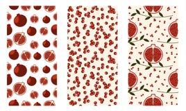 Комплект безшовных плодоовощей vector картина, яркая красочная предпосылка с гранатовыми деревьями, семенами, ветвями с листьями Стоковая Фотография RF