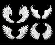 Комплект белых крылов Стоковые Изображения