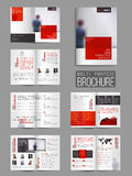 Комплект брошюры 12 страниц современный универсальный Стоковые Фото