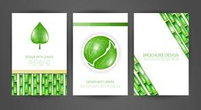 Комплект брошюр с листьями Стоковая Фотография RF