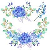 Комплект букетов акварели с голубой гортензией цветет Стоковое Изображение