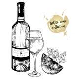 Комплект вектора белого вина в выгравированном винтажном стиле Бутылка вина, стекло, известка и петрушка На белой предпосылке Стоковая Фотография