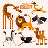 Комплект вектора животных африканца шаржа стоковая фотография rf