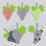 Комплект вектора значка виноградины Стоковое Изображение