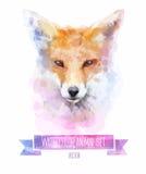 Комплект вектора иллюстраций акварели милая лисица