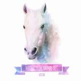 Комплект вектора иллюстраций акварели милая лошадь