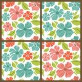 Комплект вектора. Картины цветков весны. Стоковые Изображения RF