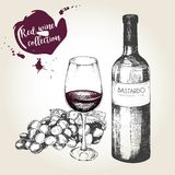 Комплект вектора красного вина в винтажном стиле Бутылка, стекло и виноградина Польза для ресторана, кафа, магазина, еды, меню, д Стоковое Фото