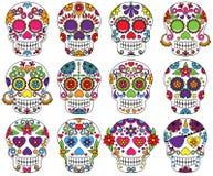 Комплект вектора дня мертвых черепов иллюстрация вектора
