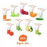 Комплект вектора органических vegetable соков иллюстрация штока