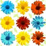 Комплект вектора реалистических цветков в желтых, красных и голубых цветах Стоковые Изображения