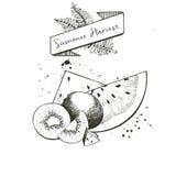 Комплект вектора сбора лета украшенный с знаменем, папоротником выходит и закрывает Куски Watermelone и плодоовощ кивиа Стоковое Изображение RF