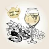 Комплект вектора собрания белого вина Выгравированный винтажный стиль Стекло, мидия, известка и виноградина султанши Стоковые Фотографии RF