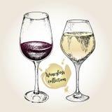 Комплект вектора собрания рюмки Выгравированный винтажный стиль Стандартные стекла для белых и красных вин Стоковые Фото