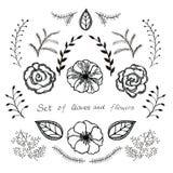 Комплект вектора флористический Графическое собрание с листьями и цветками, рисуя элементами Стоковая Фотография RF
