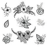 Комплект вектора флористический Графическое собрание с листьями и цветками, рисуя элементами Стоковое Фото
