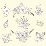 Комплект вектора флористический Графическое собрание с листьями и цветками, рисуя элементами Стоковые Фото