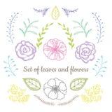 Комплект вектора флористический Графическое собрание с листьями и цветками, рисуя элементами Стоковое Изображение